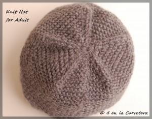 10 Opciones de gorros tejidos con cuatro agujas (9)
